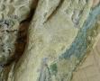 ange nimbé au Musée d'Art et d'Archéologie du Périgord (7)