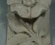 Bilan sanitaire Mont Saint Michel  (6)