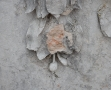 Etude préalable restauration Chaumont (7)
