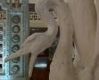 Roubaix musée de la Piscine-Cygne (2)